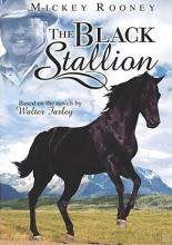 LE_AVVENTURE_DI_BLACK_STALLION