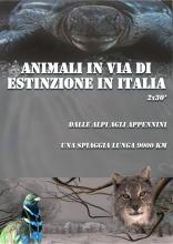ANIMALI_IN_VIA_DI_ESTINZIONE
