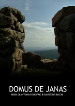 DOMUS_THEJANAS