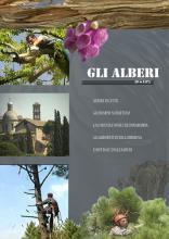 GLI_ALBERI