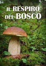 IL_RESPIRO_DEL_BOSCO