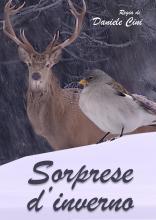 SORPRESE_D_INVERNO